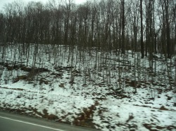 Snowy West VA