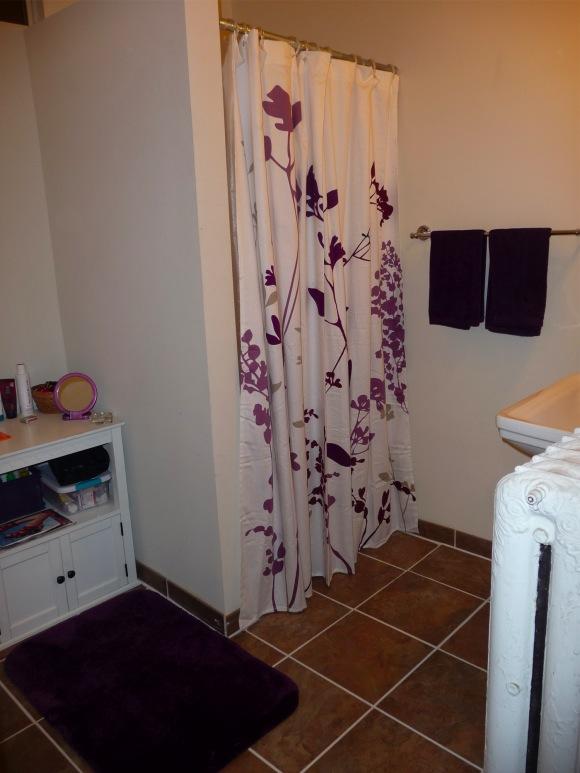 royal purple bathroom